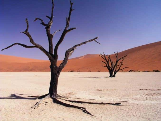 Namib Trockenwüste