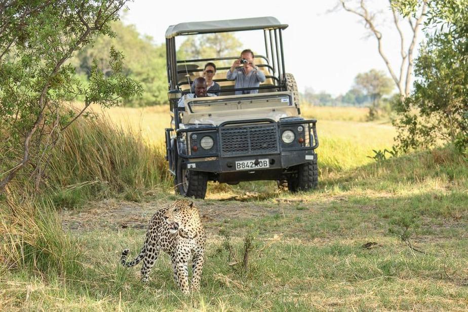 Okavango Delta Foto Tour