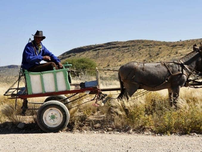 Namibia – eine Wiege der Menschheit