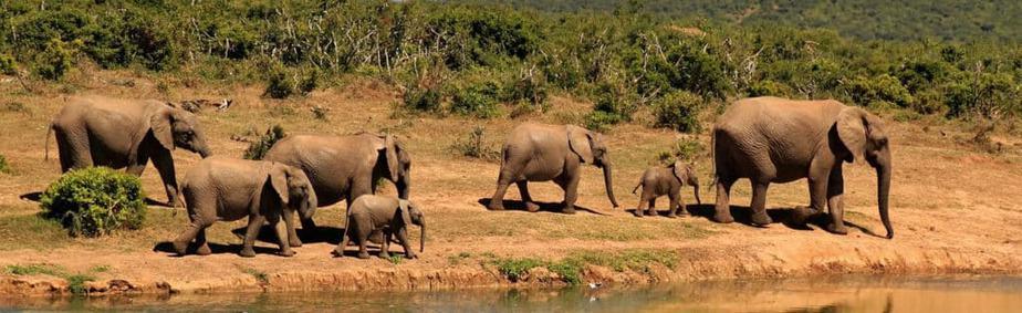 Südafrika Urlaubsreise